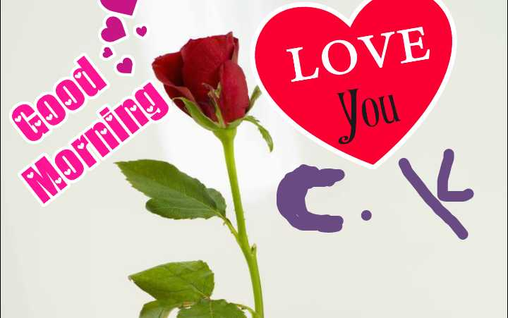 ಸಂಕಷ್ಟಹರ ಚತುರ್ಥಿಯ ಶುಭಾಶಯಗಳು. - LOVE You tood Morning - ShareChat