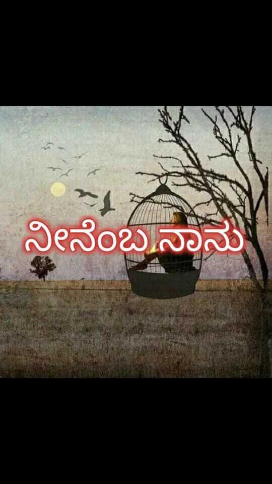 🎥 ಸ್ಲೋ ಮೋಶನ್ ವಿಡಿಯೋ - ನೀನೆಂಬನಾನು - ShareChat