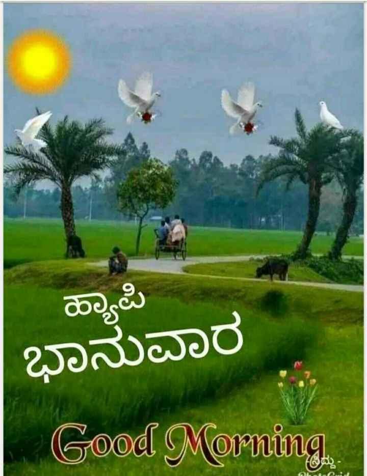 💑ಹೃದಯದ ಮಾತು - ಹ್ಯಾಪಿ ಭಾನುವಾರ Good Morning - ShareChat