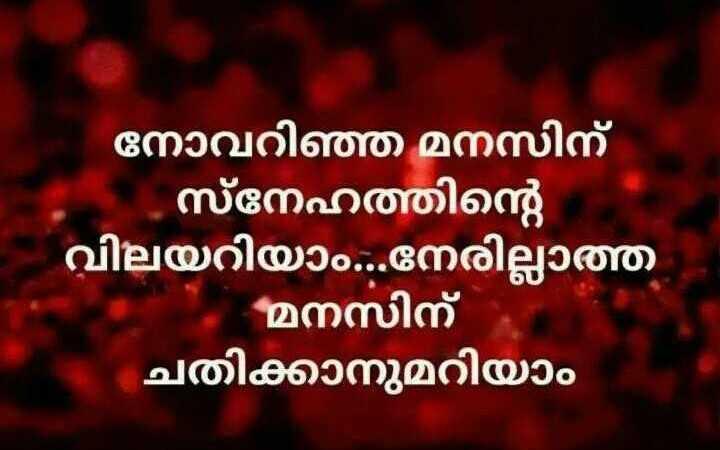 ഇപ്പോൾ തോന്നിയ കാര്യം - നോവറിഞ്ഞ മനസിന് ' . സ്നേഹത്തിന്റെ വിലയറിയാം . . . നേരില്ലാത്ത മനസിന് ' ചതിക്കാനുമറിയാം നി - ShareChat