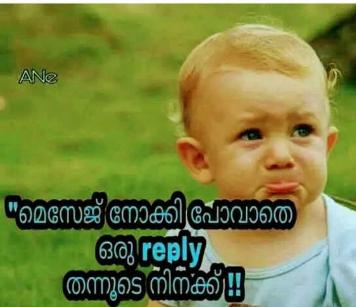 കുഞ്ഞാവ ട്രോളുകൾ - ANe മെസേജ് നോക്കി പോവാതെ 603 reply തന്നൂടെ നിനക്ക് - ShareChat