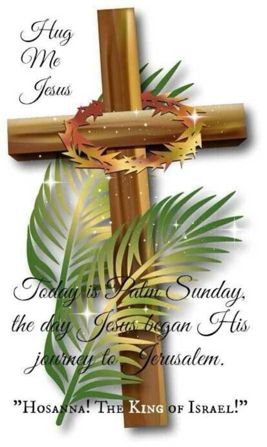 """⛪ ക്രിസ്തീയ വിശ്വാസം - Hug Me Jesus Today is Van Sunday the day Jesten began His journey to Jerusalem . Hosanna ! THE KING OF ISRAEL ! """" - ShareChat"""