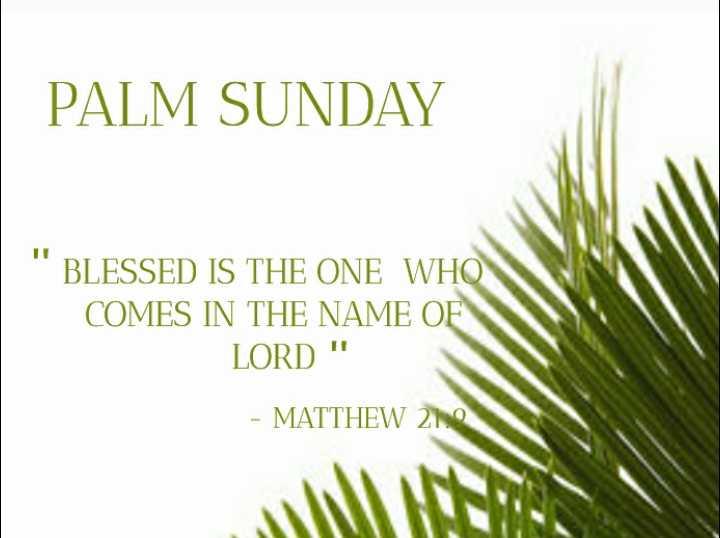 ⛪ ക്രിസ്തീയ വിശ്വാസം - PALM SUNDAY BLESSED IS THE ONE WHO COMES IN THE NAME OF LORD - MATTHEW 20 - ShareChat