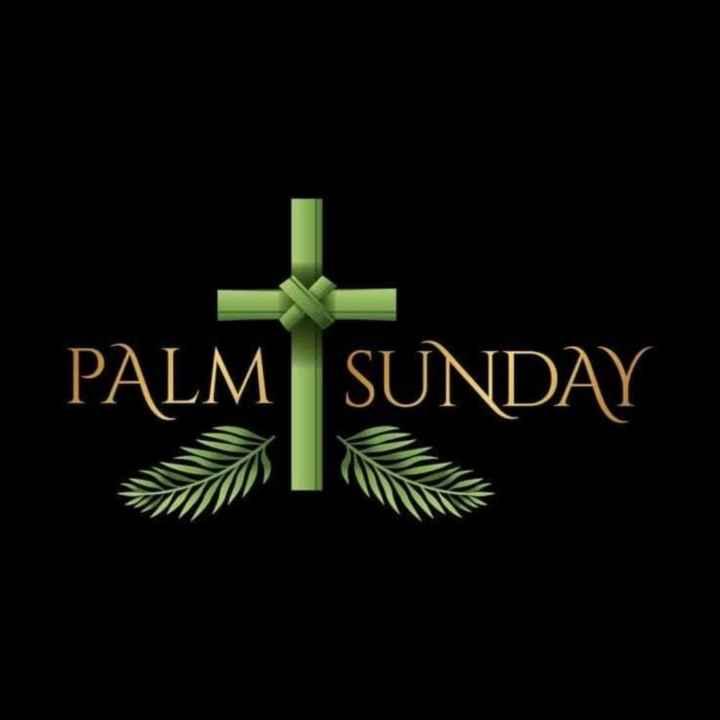 ⛪ ക്രിസ്തീയ വിശ്വാസം - PALM SUNDAY - ShareChat