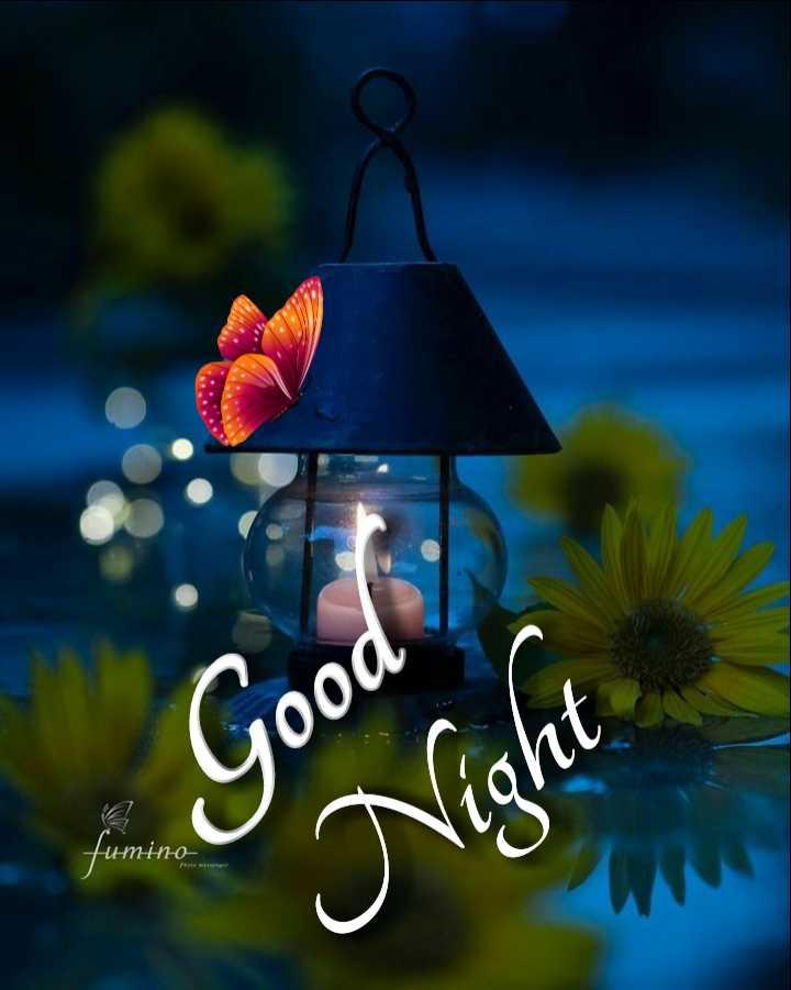 🌃 ഗുഡ് നൈറ്റ് - Good Night Нmi - ShareChat