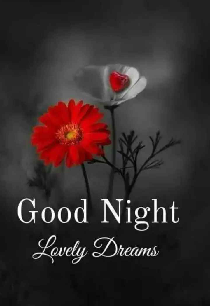 🌃 ഗുഡ് നൈറ്റ് - Good Night Lovely Dreams - ShareChat