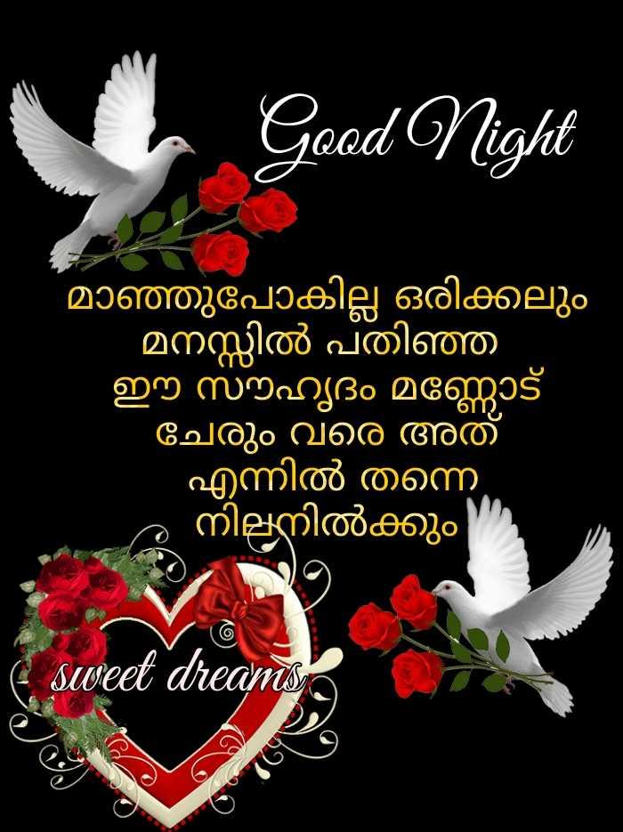 🌃 ഗുഡ് നൈറ്റ് - Good Night മാഞ്ഞുപോകില്ല ഒരിക്കലും ' മനസ്സിൽ പതിഞ്ഞ ഈ സൗഹൃദം മണ്ണോട് ചേരും വരെ അത് ' എന്നിൽ തന്നെ ം നിലനിൽക്കും ( sweet dreams - ShareChat