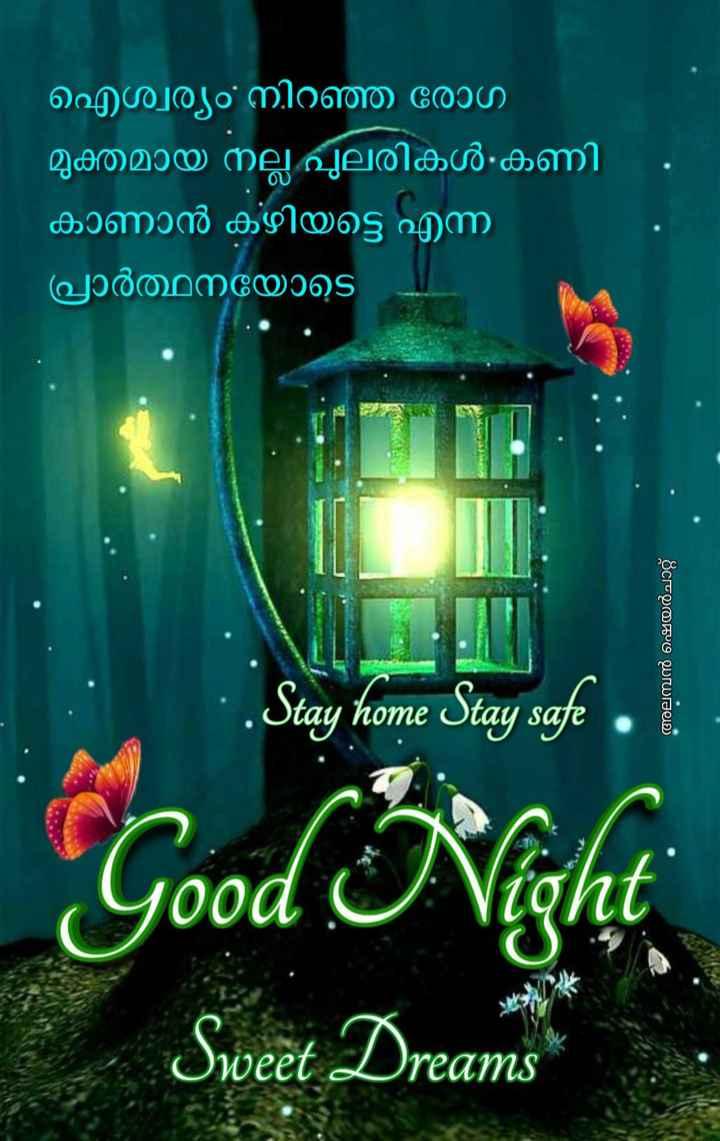 🌃 ഗുഡ് നൈറ്റ് - ഐശ്വര്യം നിറഞ്ഞ രോഗ മുക്തമായ നല്ല പുലരികൾ കണി കാണാൻ കഴിയട്ടെ എന്ന ' പ്രാർത്ഥനയോടെ പ അലമ്പൻ ഷെയർചാറ്റ് . . Stay home Stay safe . * Good Night Sweet Dreams - ShareChat