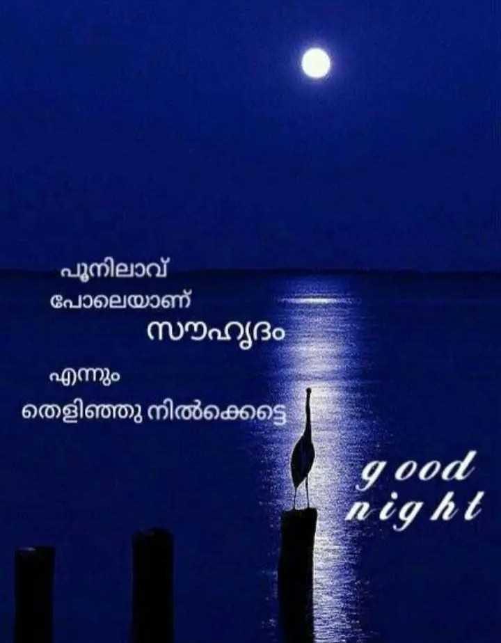 🌃 ഗുഡ് നൈറ്റ് - പൂനിലാവ് പോലെയാണ് സൗഹൃദം എന്നും ' തെളിഞ്ഞു നിൽക്കട്ടെ good night - ShareChat