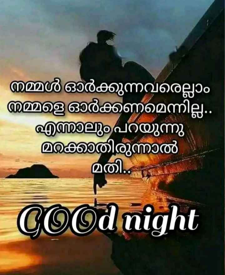🌃 ഗുഡ് നൈറ്റ് - നമ്മൾ ഓർക്കുന്നവരെല്ലാം നമ്മളെ ഓർക്കണമെന്നില്ല . എന്നാലും പറയുന്നു മറക്കാതിരുന്നാൽ - മതി . Cood night - ShareChat