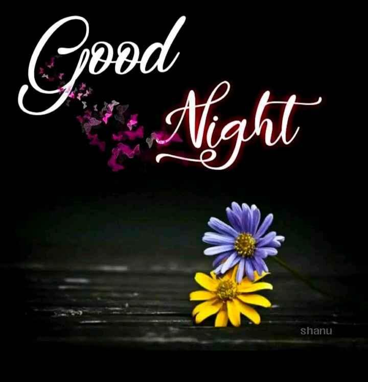 🌃 ഗുഡ് നൈറ്റ് - Good Night shanu - ShareChat