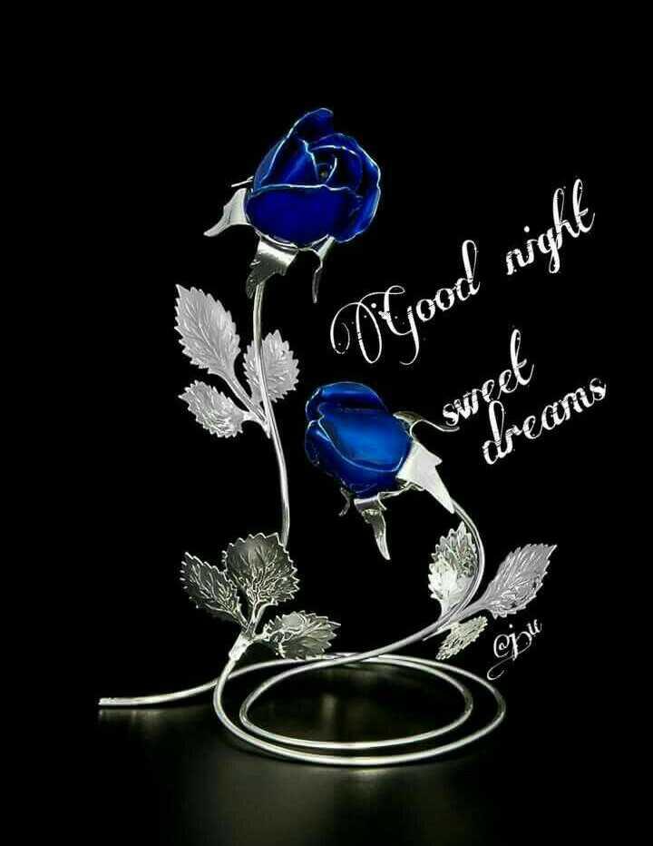 🌃 ഗുഡ് നൈറ്റ് - O good night Sweet dreams Bu - ShareChat