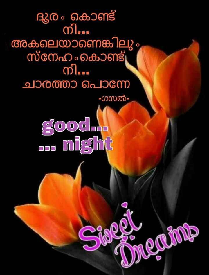 🌃 ഗുഡ് നൈറ്റ് - ദൂരം കൊണ്ട് - നീ . . അകലെയാണെങ്കിലും ്നേഹം കൊണ്ട് നീ . . . ചാരത്താ പൊന്നേ - ഗസൽ good . ca DD . . . night - ShareChat