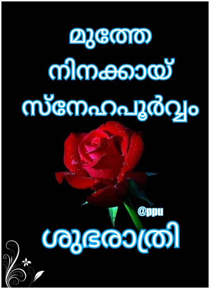 🌃 ഗുഡ് നൈറ്റ് - മുത്ത നിനക്കായ് സ്നേഹപൂർവ്വം @ ppu ശുഭരാത്രി 6 44cedes - ShareChat