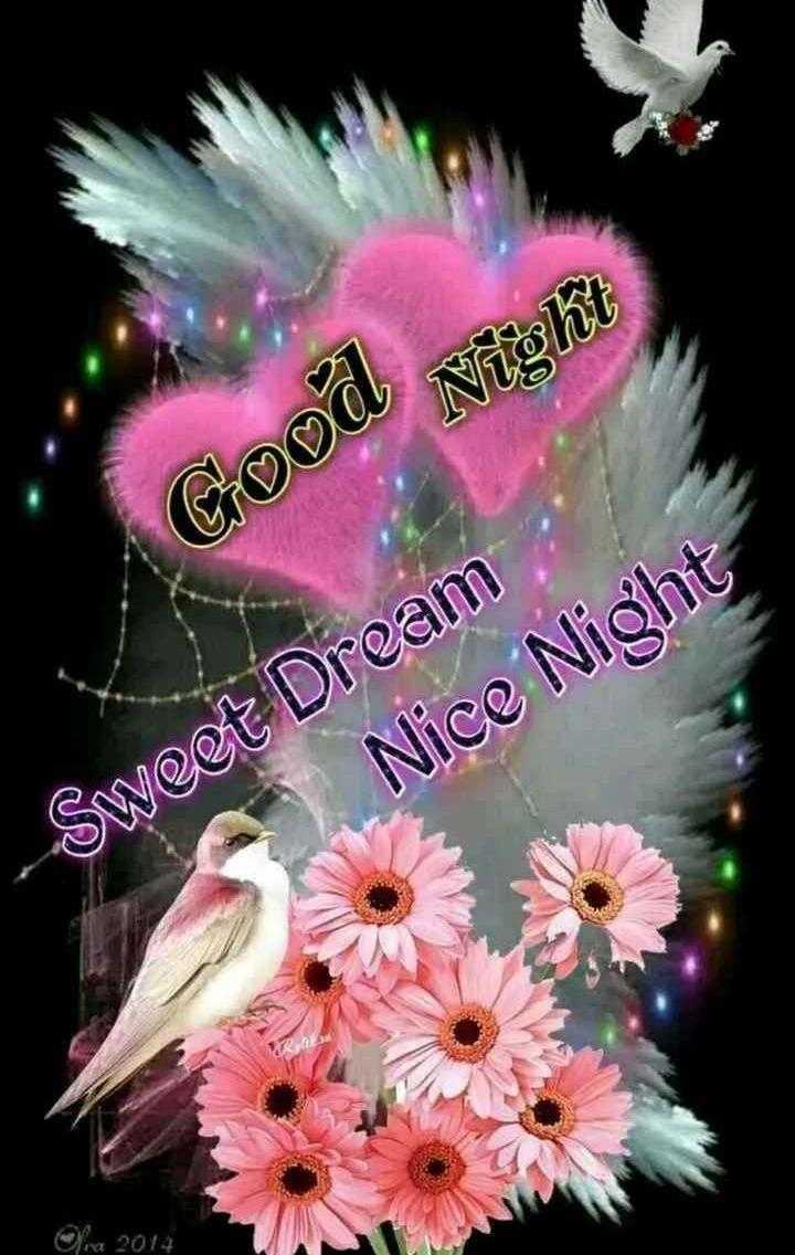 🌃 ഗുഡ് നൈറ്റ് - Night Good - Sweet Dream Nice Night Ga 2014 - ShareChat