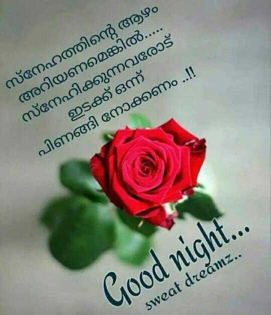 🌃 ഗുഡ് നൈറ്റ് - സ്നേഹത്തിന്റെ ആഴം അറിയണമെങ്കിൽ . . . . . നേഹിക്കുന്നവരോട് - ഇടക്ക് ഒന്ന് പിണങ്ങി നോക്കണം . . ! ! Good night . . . sweat dreamz . . - ShareChat