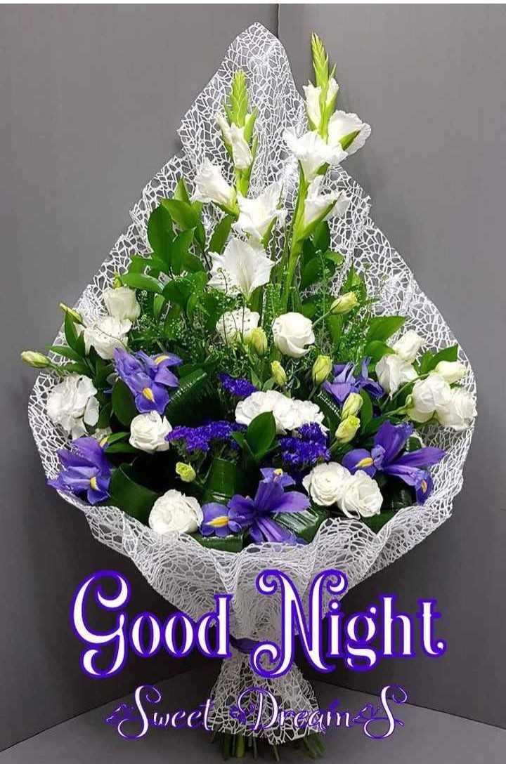 🌃 ഗുഡ് നൈറ്റ് - ARE A Good Night Sweet Digam s - ShareChat