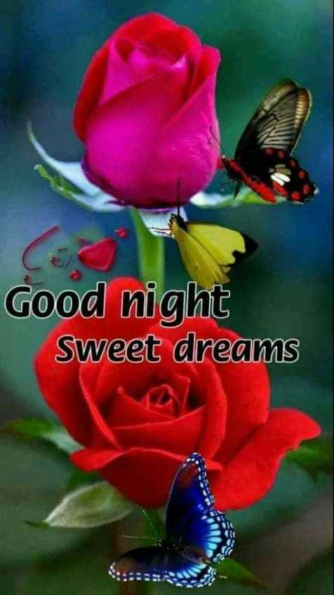 🌃 ഗുഡ് നൈറ്റ് - Good night Sweet dreams - ShareChat