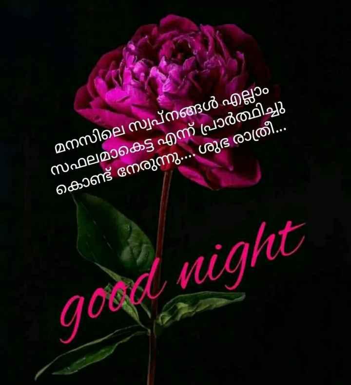 🌃 ഗുഡ് നൈറ്റ് - മനസിലെ സ്വപ്നങ്ങൾ എല്ലാം സഫലമാകെട്ട് എന്ന് പ്രാർത്ഥിച്ചു കൊണ്ട് നേരുന്നു . ശുഭ രാത്രി . . . good night - ShareChat
