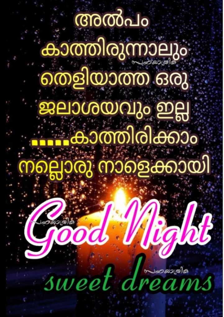 🌃 ഗുഡ് നൈറ്റ് - - സാജാതിക് അൽപം കാത്തിരുന്നാലും തെളിയാത്ത ഒരു ജലാശയവും ഇല്ല . . . കാത്തിരിക്കാം നല്ലൊരു നാളെക്കായി Good Night sweet dreams സയാത്രിക dreams - ShareChat