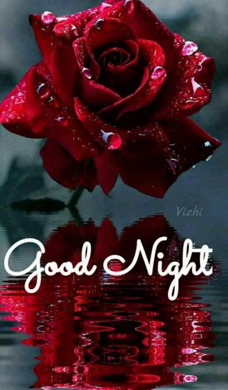 🌃 ഗുഡ് നൈറ്റ് - Vizhi Good Night - ShareChat