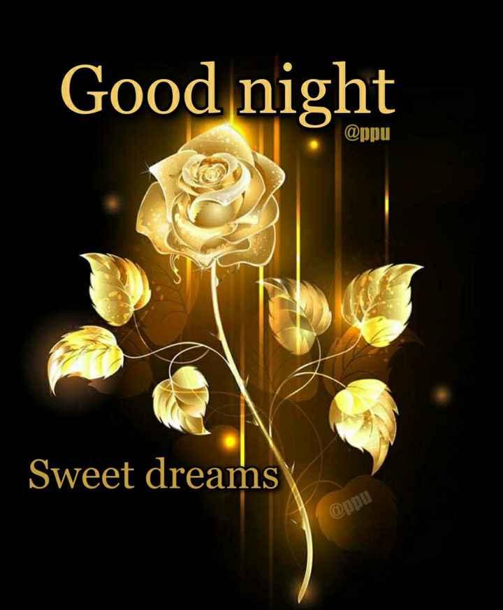🌃 ഗുഡ് നൈറ്റ് - Good night @ ppu Sweet dreams @ ppu - ShareChat