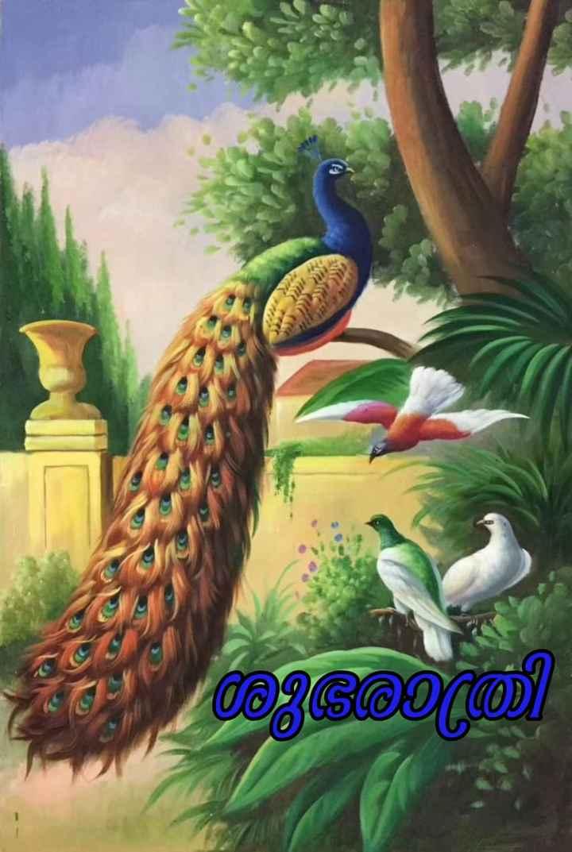 🌃 ഗുഡ് നൈറ്റ് - ആശയത്തി - ShareChat
