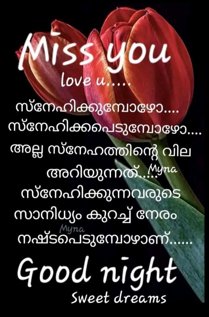 🌃 ഗുഡ് നൈറ്റ് - Miss you love u . . . . . ' സ്നേഹിക്കുമ്പോഴോ . . . ' സ്നേഹിക്കപ്പെടുമ്പോഴോ . . ' അല്ല സ്നേഹത്തിന്റെ വില - അറിയുന്നത് . ശ ' സ്നേഹിക്കുന്നവരുടെ സാനിധ്യം കുറച്ച് നേരം ' നഷ്ടപെടുമ്പോഴാണ് . . . | Muna Good night Sweet dreams - ShareChat
