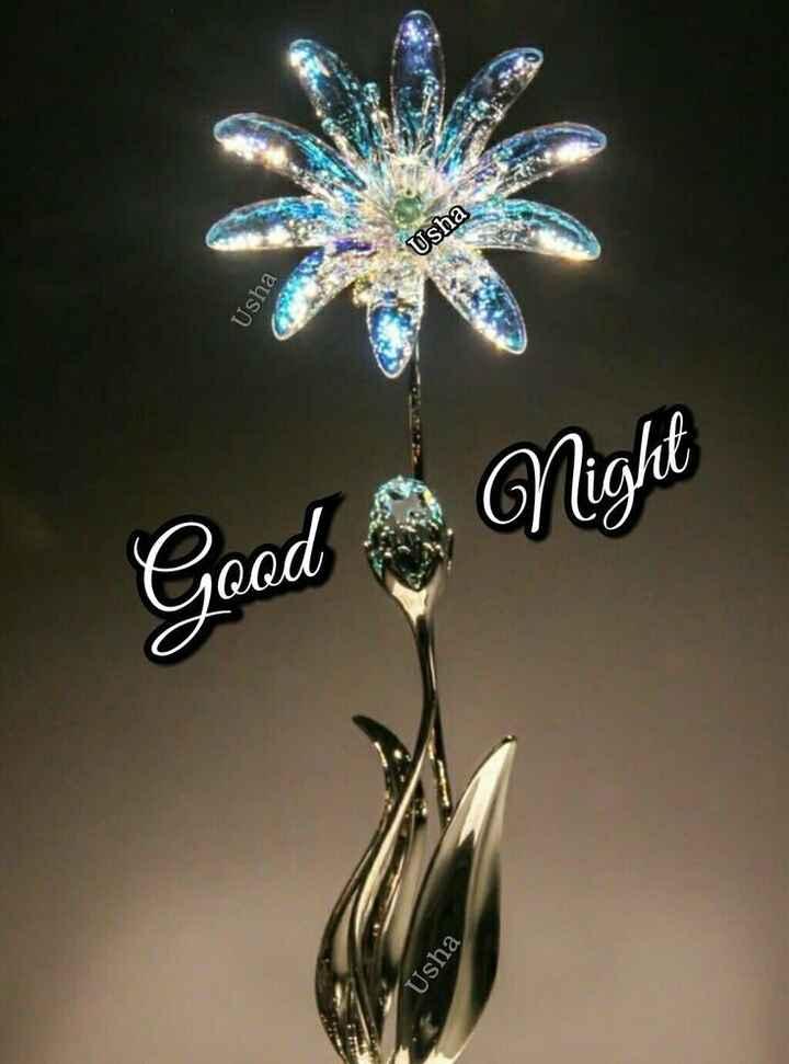 🌃 ഗുഡ് നൈറ്റ് - Usha Usha Night Good Usha - ShareChat