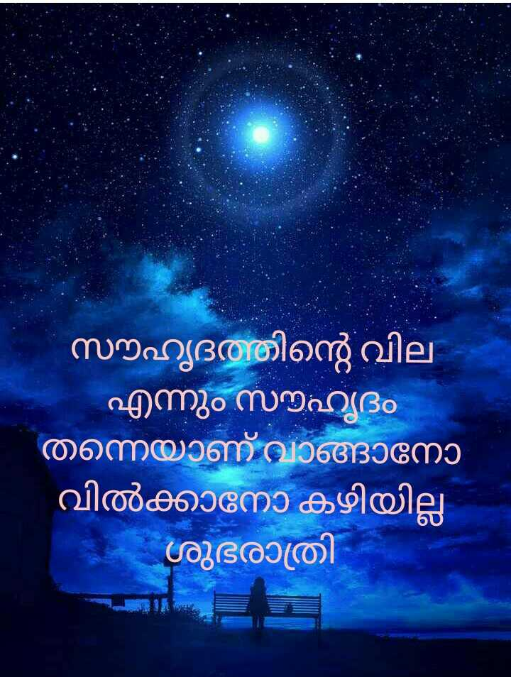 🌃 ഗുഡ് നൈറ്റ് - സൗഹൃദത്തിന്റെ വില ' എന്നും സൗഹൃദം തന്നെയാണ് വാങ്ങാനോ ' വിൽക്കാനോ കഴിയില്ല - ശുഭരാത്രി - ShareChat