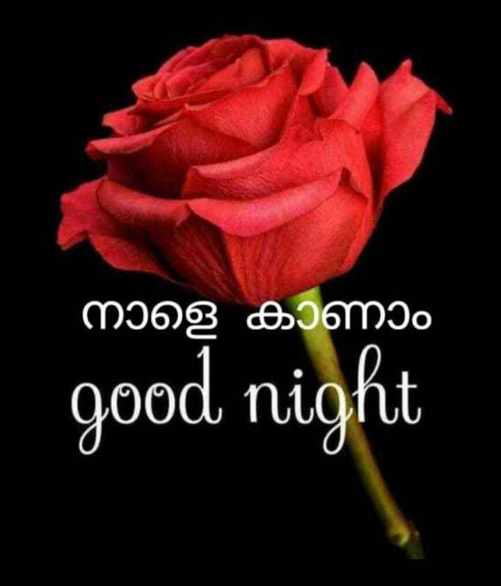 🌃 ഗുഡ് നൈറ്റ് - നാളെ കാണാം good night - ShareChat
