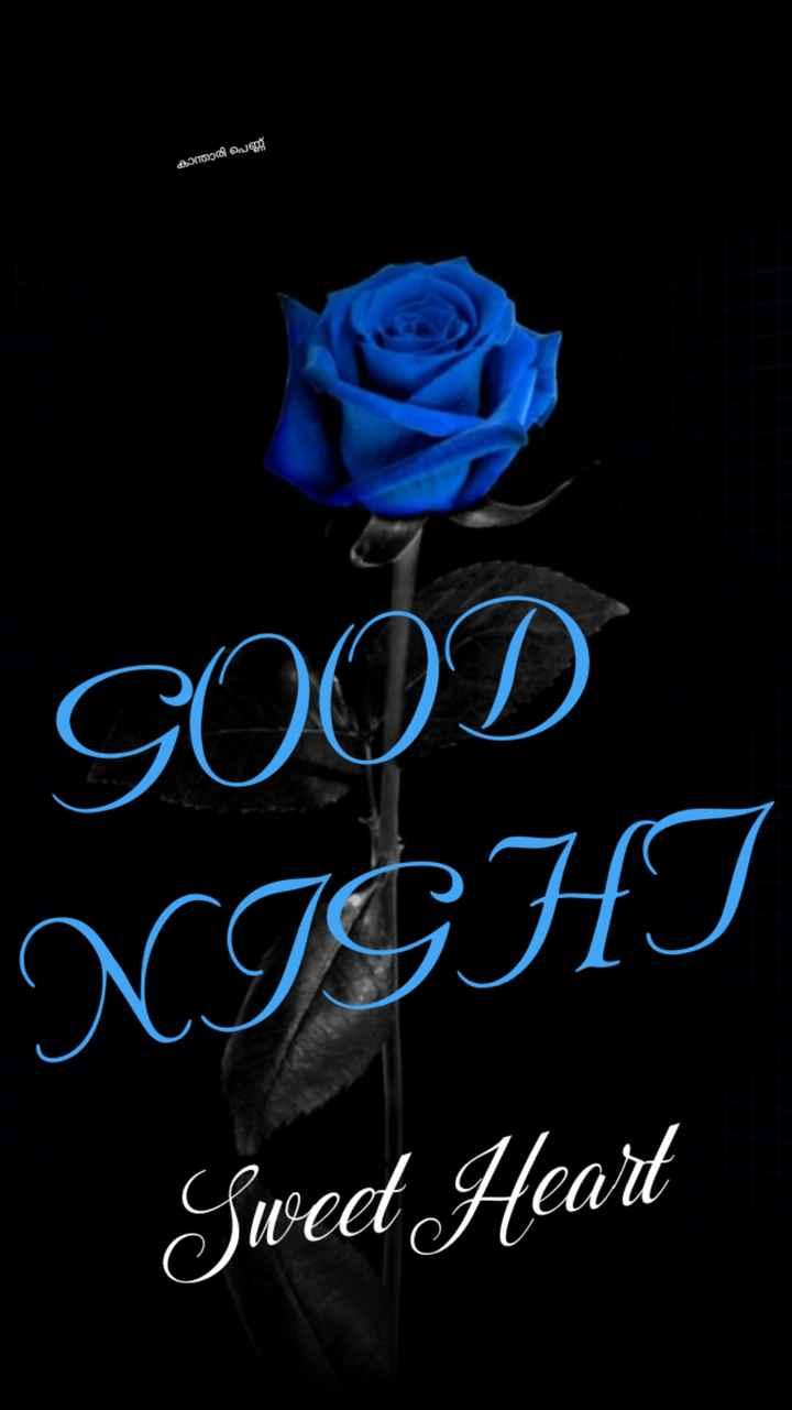 🌃 ഗുഡ് നൈറ്റ് - കാന്താരി പെണ്ണ് GOOD NIGHT Sweet Heart - ShareChat