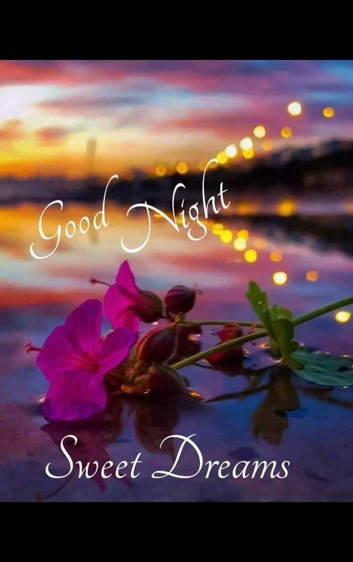 🌃 ഗുഡ് നൈറ്റ് - ood Sweet Dreams - ShareChat