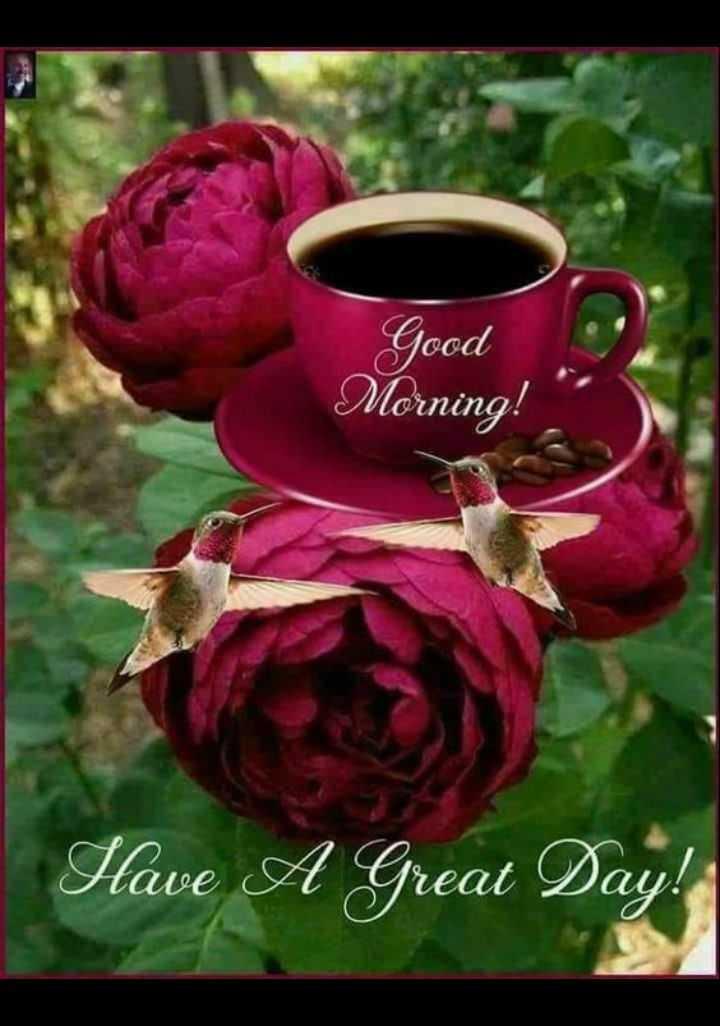 🌞 ഗുഡ് മോണിംഗ് - Good Morning ! Have A Great Day ! - ShareChat