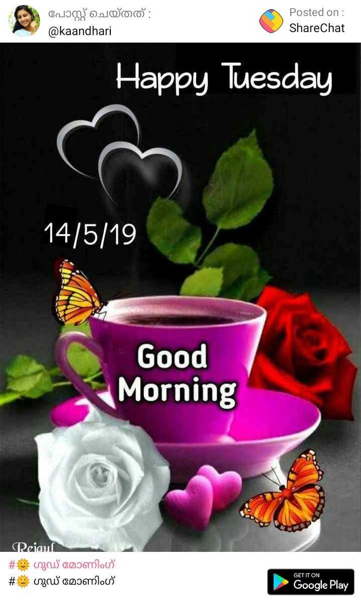 🌞 ഗുഡ് മോണിംഗ് - Cology woo : @ kaandhari Posted on : ShareChat ShareChat Happy Tuesday 14 / 5 / 19 Good Morning Reiauí # Gogomloos # wo coomlouš GET IT ON Google Play - ShareChat