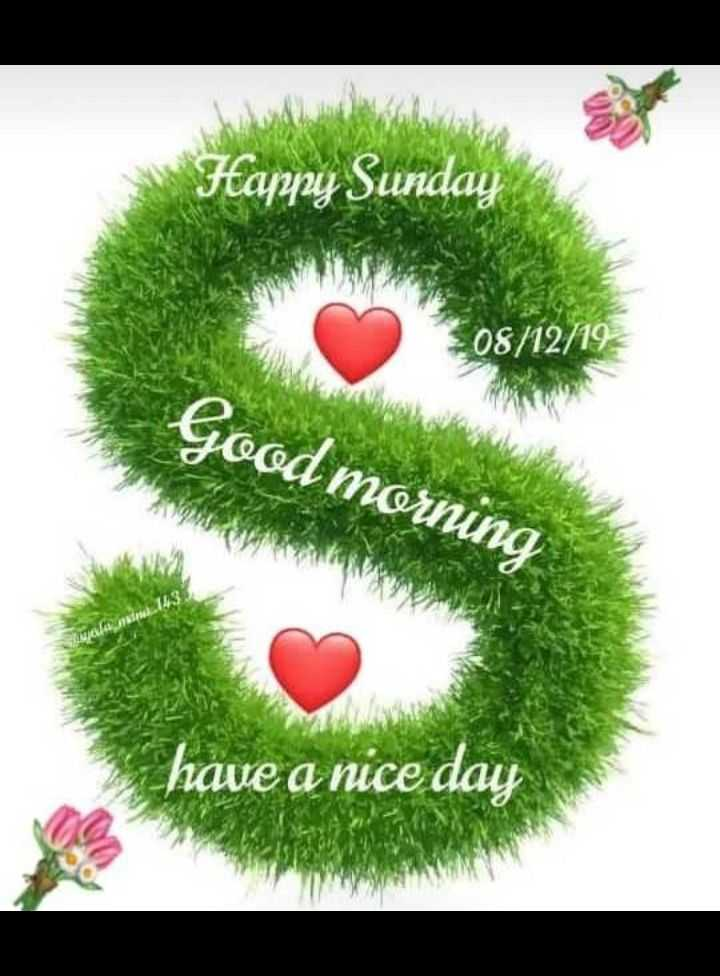 🌞 ഗുഡ് മോണിംഗ് - Happy Sunday 08 / 12 / 19 Good morning IL have a nice day - ShareChat