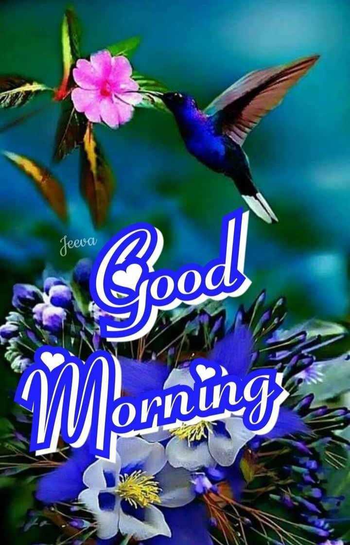 🌞 ഗുഡ് മോണിംഗ് - Jeeva Sood ! Morning - ShareChat