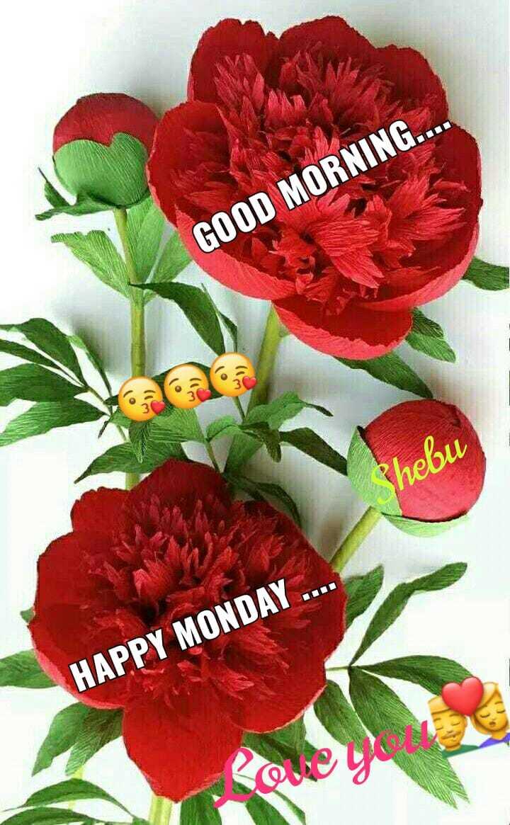 🌞 ഗുഡ് മോണിംഗ് - GOOD MORNING . . Phebu HAPPY MONDAY . . Coucou - ShareChat