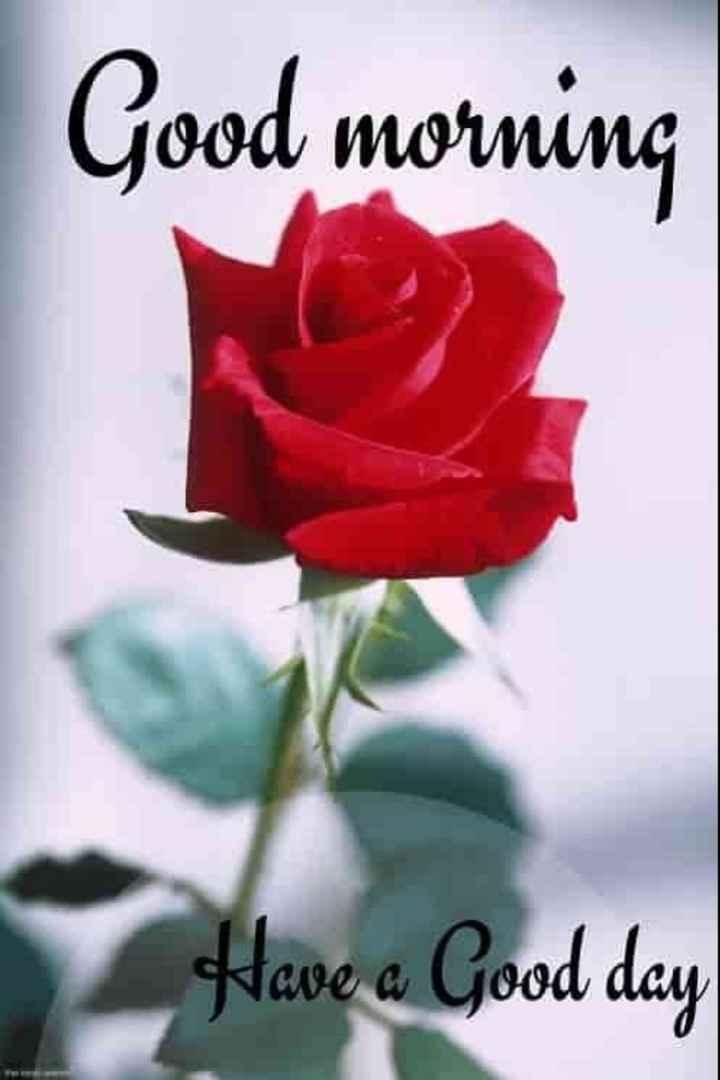 🌞 ഗുഡ് മോണിംഗ് - Good morning Have a Good day - ShareChat