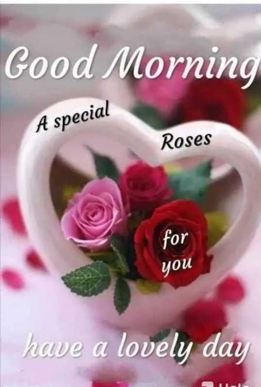🌞 ഗുഡ് മോണിംഗ് - Good Morning A special Roses for you I have a lovely day - ShareChat