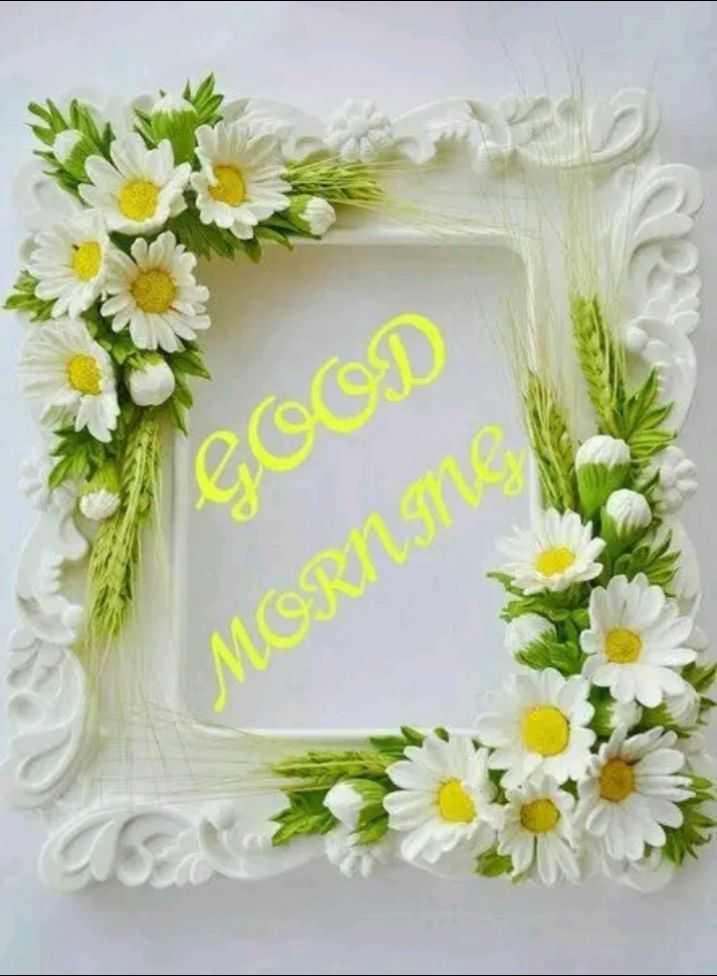 🌞 ഗുഡ് മോണിംഗ് - COOD MORNS - ShareChat