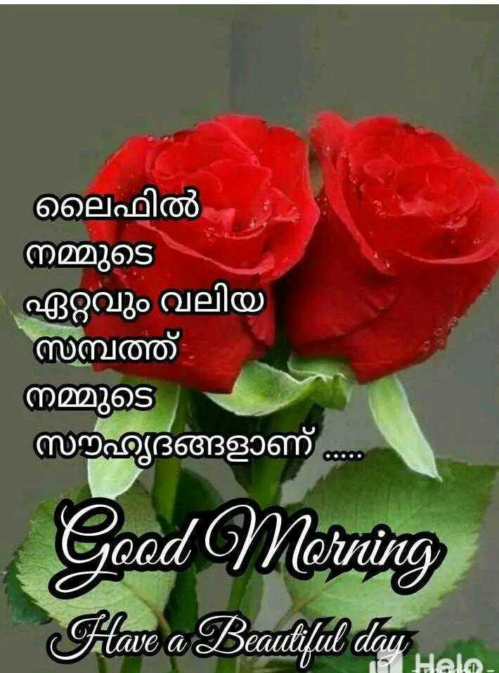 🌞 ഗുഡ് മോണിംഗ് - ലൈഫിൽ നമ്മുടെ ഏറ്റവും വലിയ മ്പത്ത് നമ്മുടെ സൗഹൃദങ്ങളാണ് Good Morning Have a Beautiful day Hele - ShareChat