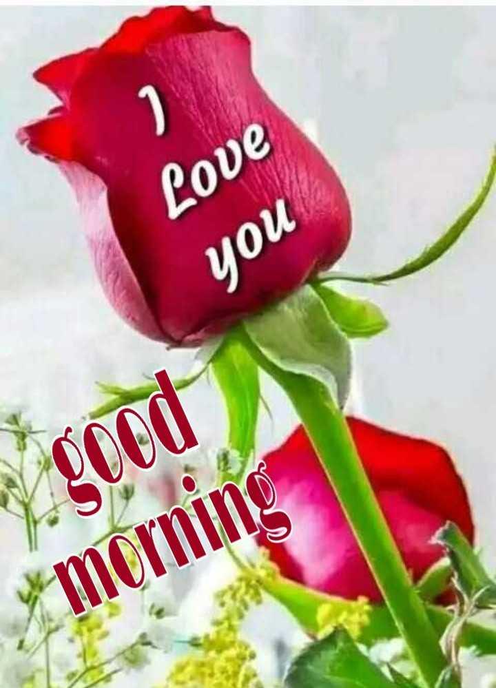 🌞 ഗുഡ് മോണിംഗ് - Love you 7 . good morning - ShareChat