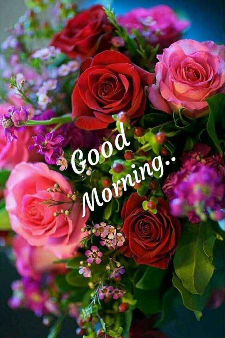 🌞 ഗുഡ് മോണിംഗ് - Good Morning . . - ShareChat
