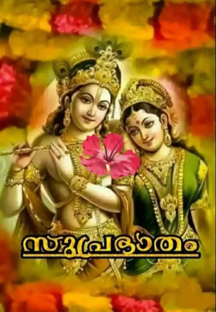 🌞 ഗുഡ് മോണിംഗ് - സുപ്രഭാത - ShareChat