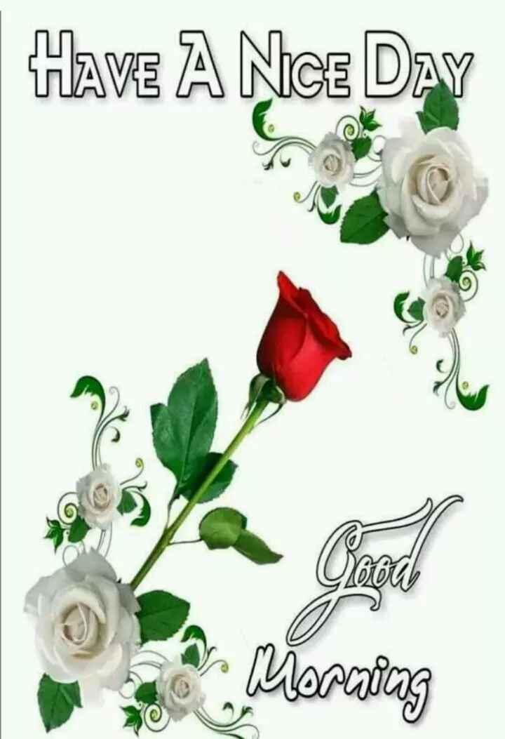 🌞 ഗുഡ് മോണിംഗ് - Have A Nice Day 92660 on Morning - ShareChat