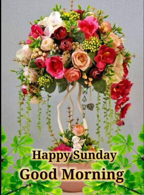 🌞 ഗുഡ് മോണിംഗ് - Happy Sunday Good Morning - ShareChat