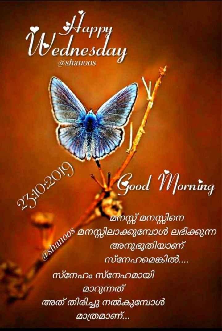 🌞 ഗുഡ് മോണിംഗ് - Happy ednesday @ shanoos Good Morning OUCL 25 : 10 : 2019 - @ shanoos മനസ്സ് മനസ്സിനെ മനസ്സിലാക്കുമ്പോൾ ലഭിക്കുന്ന - അനുഭൂതിയാണ് സ്നേഹമെങ്കിൽ . . . . ' സ്നേഹം സ്നേഹമായി മാറുന്നത് അത് തിരിച്ചു നൽകുമ്പോൾ മാത്രമാണ് . . . - ShareChat