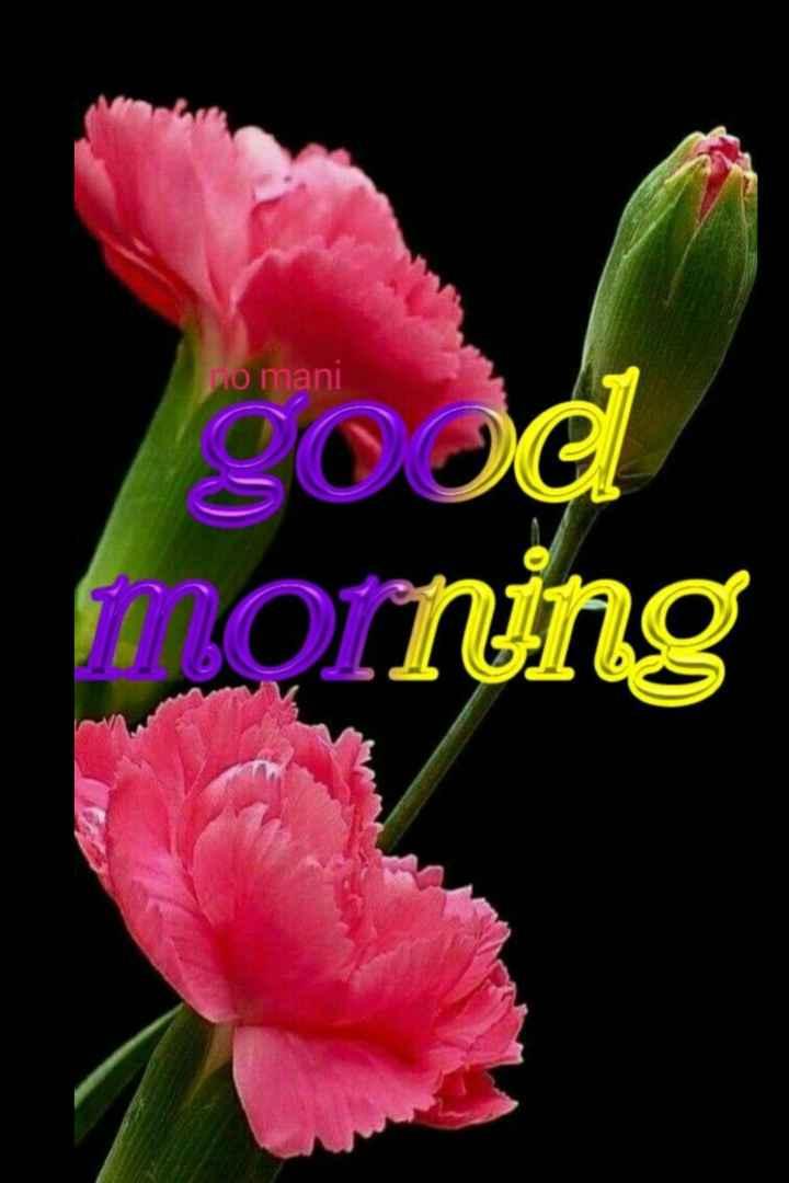 🌞 ഗുഡ് മോണിംഗ് - no mani good morning - ShareChat