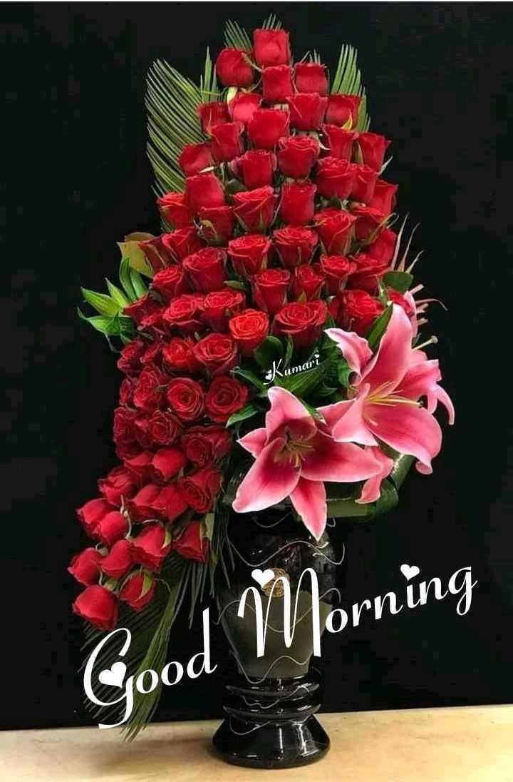 🌞 ഗുഡ് മോണിംഗ് - Житari Cood IV Jorning - ShareChat
